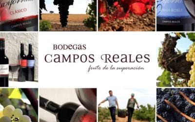 """Bodegas Campos Reales elegida """"Mejor Bodega del Año"""" en los Premios Verema 2020"""