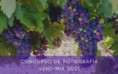 """Edición 2021 del """"Concurso de Fotografía"""" Vendimia Bodegas Campos Reales"""